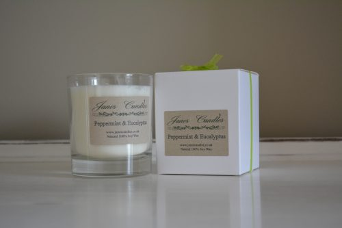 Peppermint & Eucalyptus Jar Candle